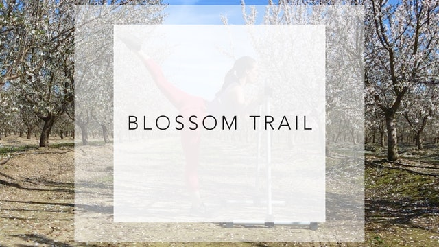 Blossom Trail: 10 Minute Total Body