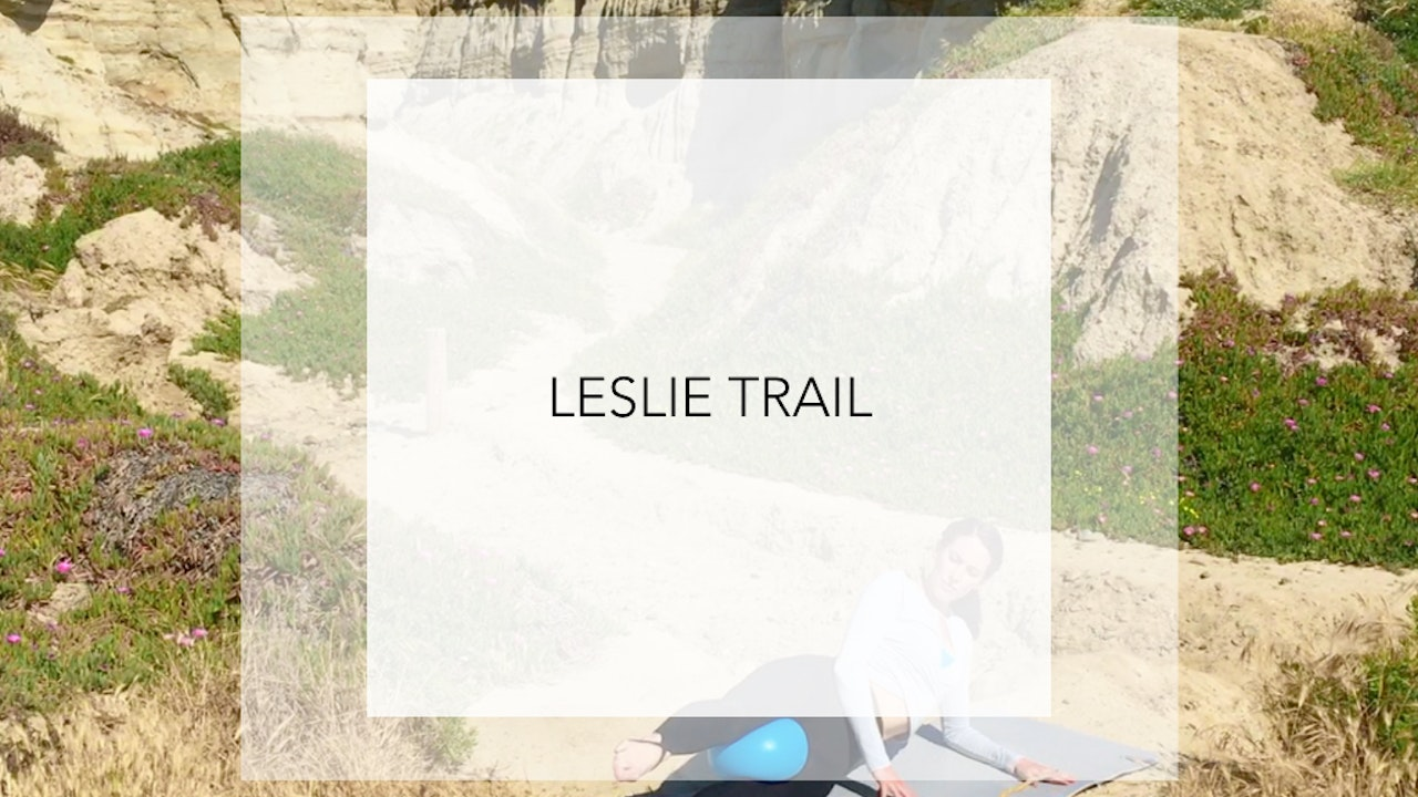 Leslie Trail: 18 Minute Total Body Ball Burn