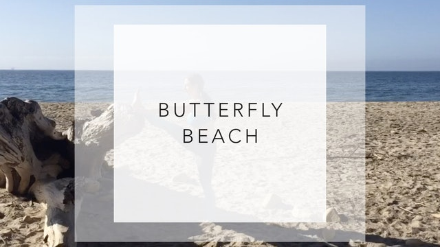 Butterfly Beach: 17 Minute Beach Run Barre Workout