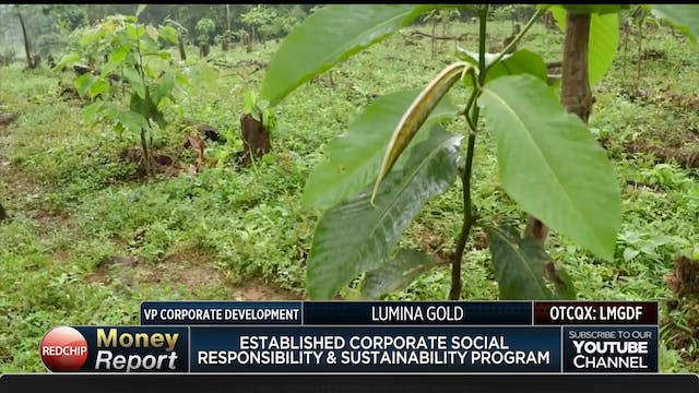 Lumina Gold 38th Largest Primary Gold...