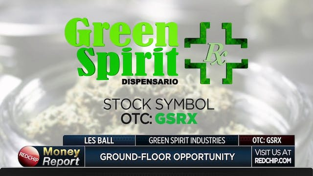 Daily Business Report - Green Spirit