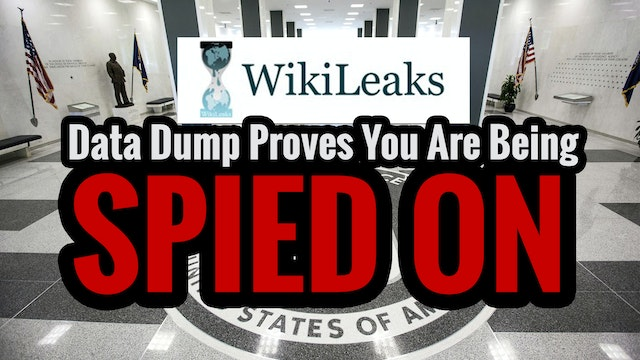 Wikileaks Data Dump Proves You Are Be...