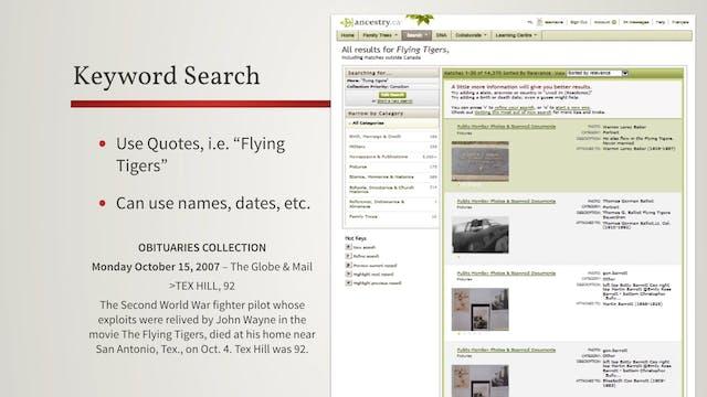 Search Fields