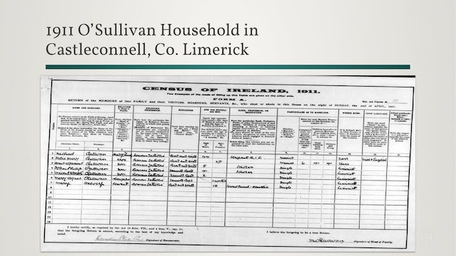 Irish Census Records: Clues in the 1911 Census