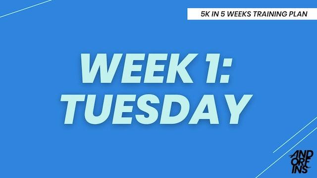 WEEK 1: TUESDAY