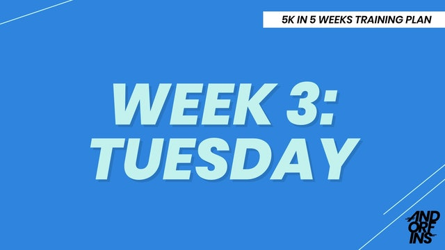 WEEK 3: TUESDAY
