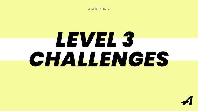LEVEL 3 CHALLENGES