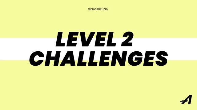 LEVEL 2 CHALLENGES