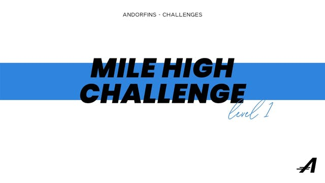 MILE HIGH LEVEL 1