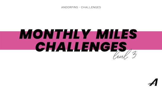 MONTHLY MILES LEVEL 3
