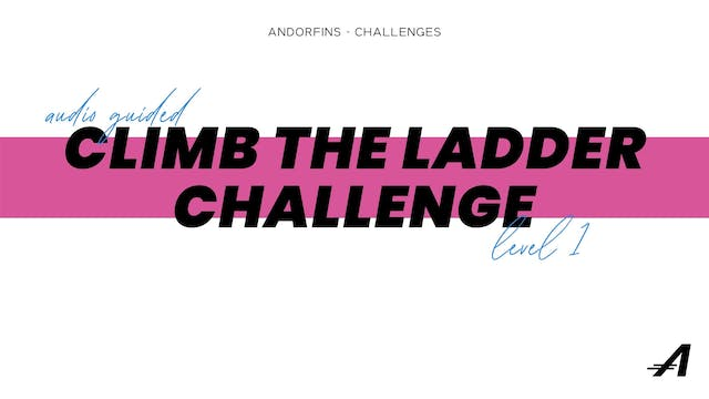 CLIMB THE LADDER LEVEL 1 (Audio Guide...