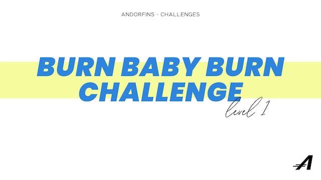 BURN BABY BURN LEVEL 1