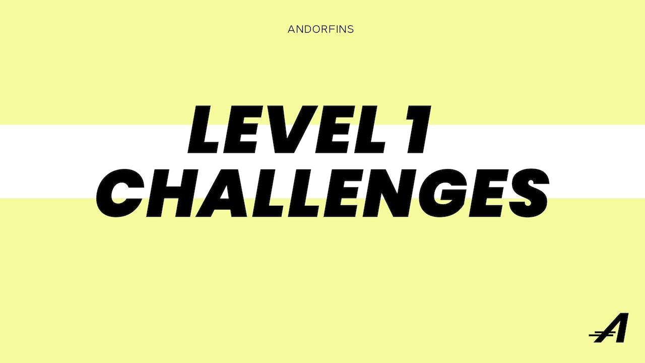 LEVEL 1 CHALLENGES