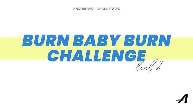 BURN BABY BURN LEVEL 2