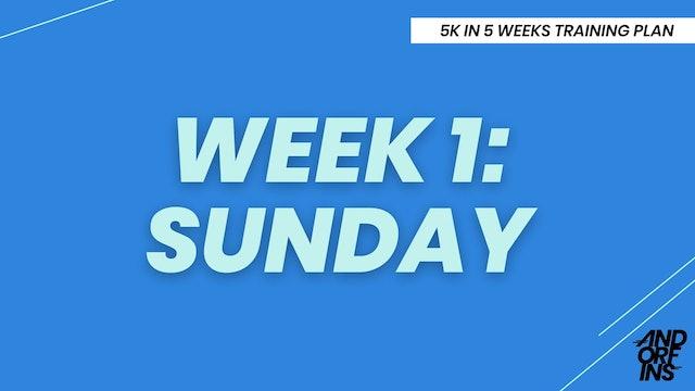 WEEK 1: SUNDAY