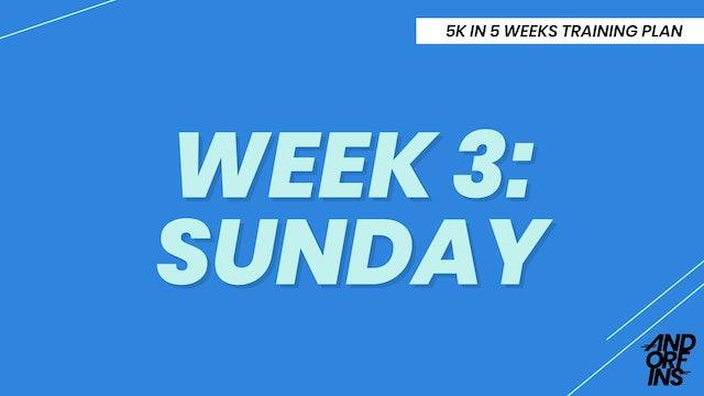 WEEK 3: SUNDAY