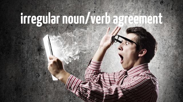 Irregular noun/verb agreement   Grammar