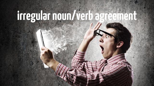 Irregular noun/verb agreement | Grammar