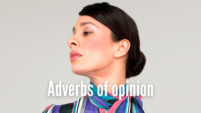 Adverbs of opinion   Grammar