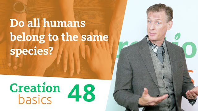 Do all humans belong to the same spec...