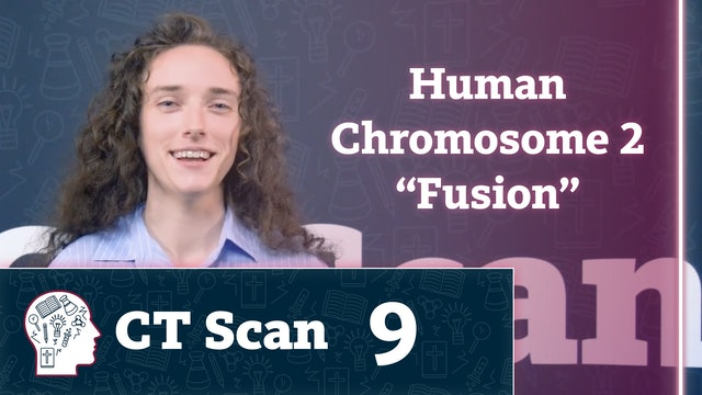 "Human Chromosome 2 ""Fusion"""
