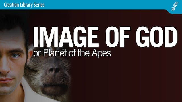 Image of God or Planet of the Apes