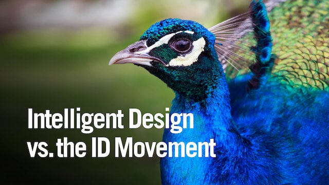 Intelligent Design vs the ID Movement
