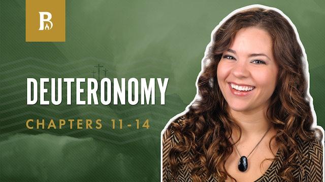 Signs and Wonders; Deuteronomy 11-14