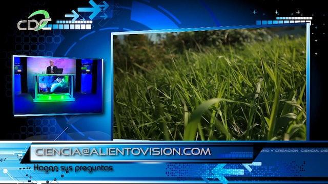 Lecciones de la Biomimética Episodio 5