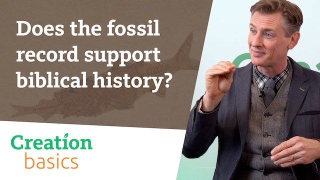 Does the fossil record support biblical history?