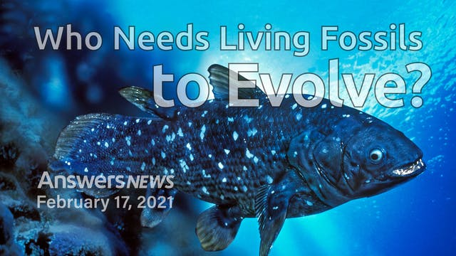 2/17 Who Needs Living Fossils to Evolve?