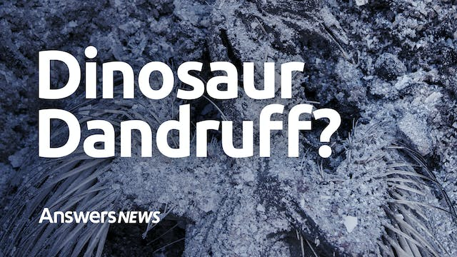 Dinosaur Dandruff and More