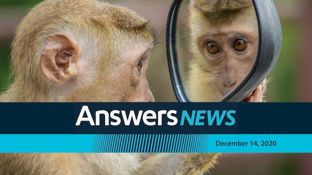 12/14 Monkey See, Monkey Don't