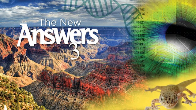 The New Answers 3