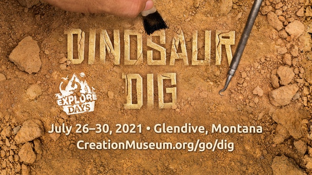 Dig for Dinosaurs This Summer!