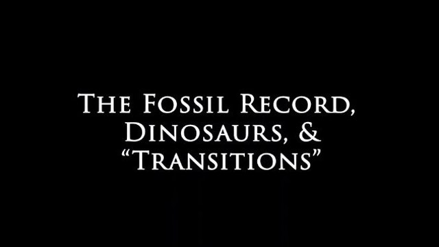 Genesis Impact Clip - Fossils, Dinosaurs, and Transitions