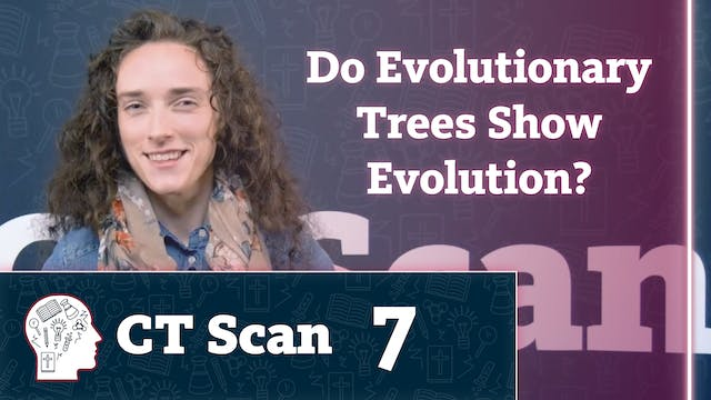 Do Evolutionary Trees Show Evolution?