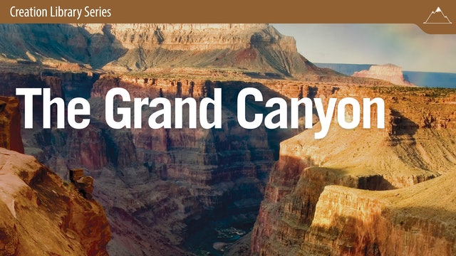 Grand Canyon: Testimony to the Biblical Account of Earth's History