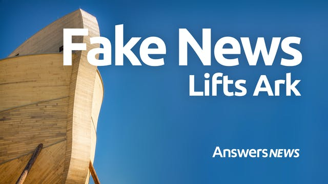 Fake News Lifts Ark