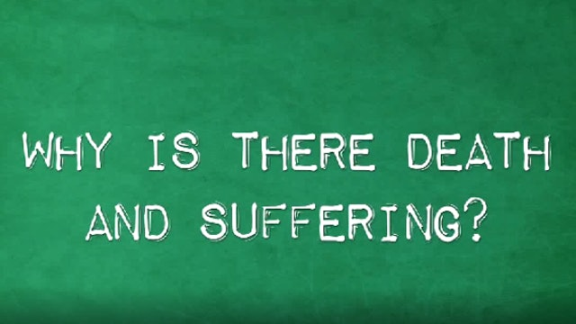 Why is There Death & Suffering?
