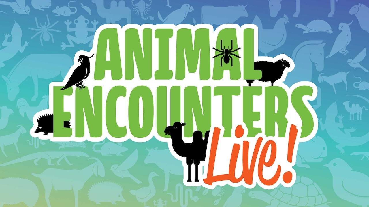 Animal Encounters Live