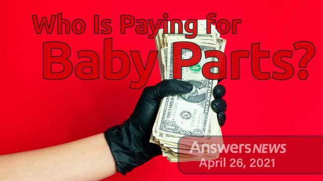 4/28 Who Is Paying for Baby Parts?