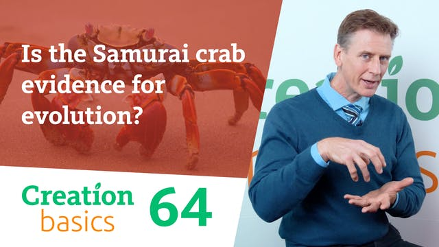 Is the Samurai crab evidence for evol...