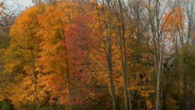 Front Porch Gospel with Buddy Davis: Autumn, Part 1