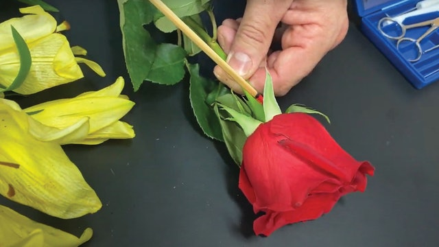 Hands On: Dissecting Flowers