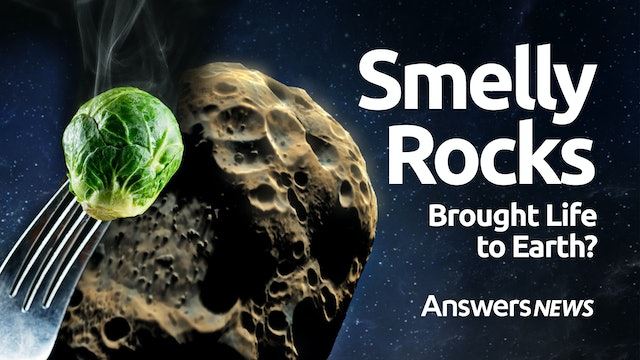 Did a Smelly Rock Bring Life to Earth?