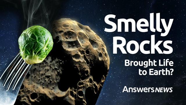10/21 Did a Smelly Rock Bring Life to Earth?