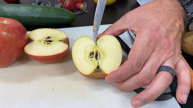 Hands On: Fruit Dissection