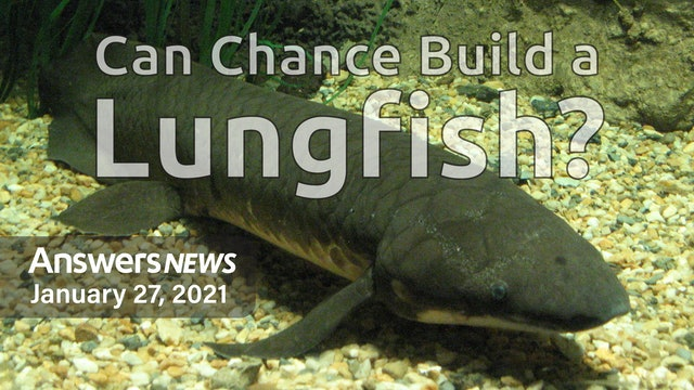 1/27 Can Chance Build a Lungfish?