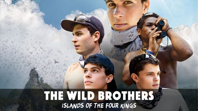 The Wild Brothers: Islands of the Fou...